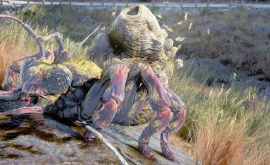 Fallout 76 – Enemies Detail Guide